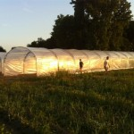 Les tunnels au soleil couchant