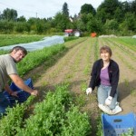 Gautier et Christine sur une planche de carottes